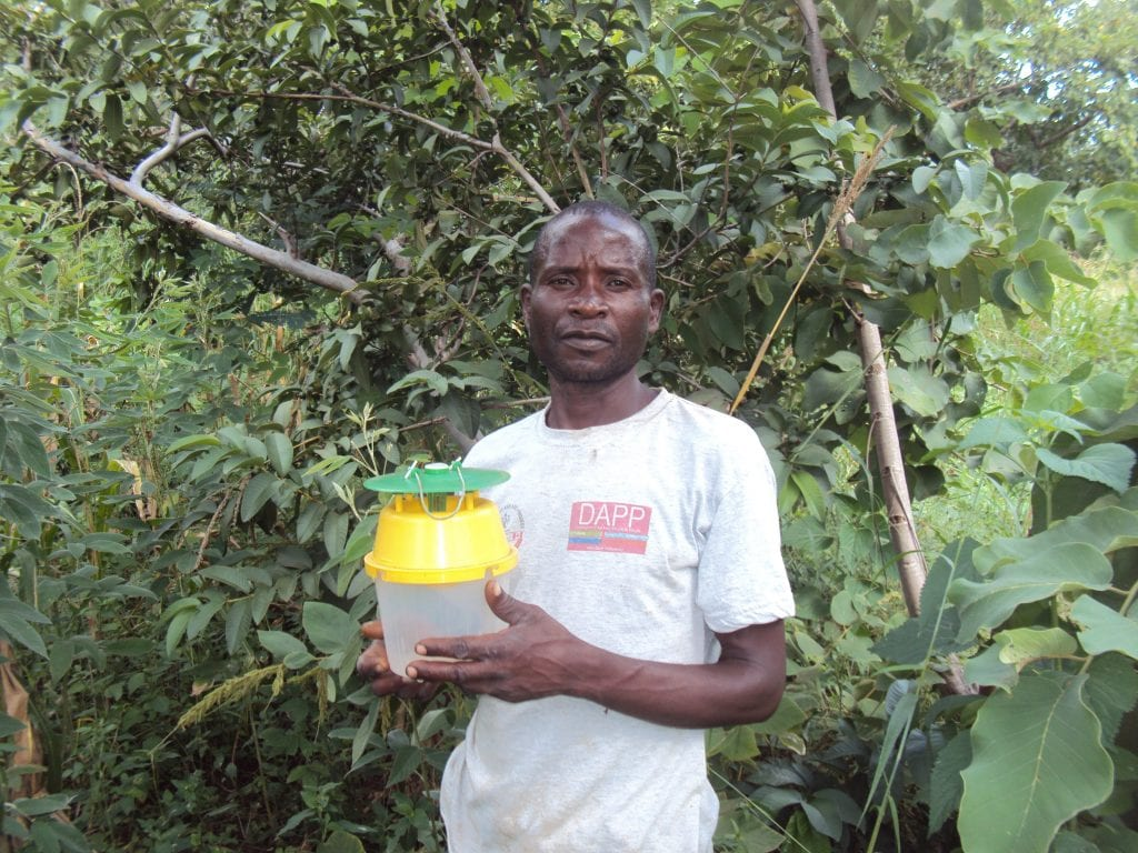 Moth traps help farmers in Malawi combat the Fall Armyworm
