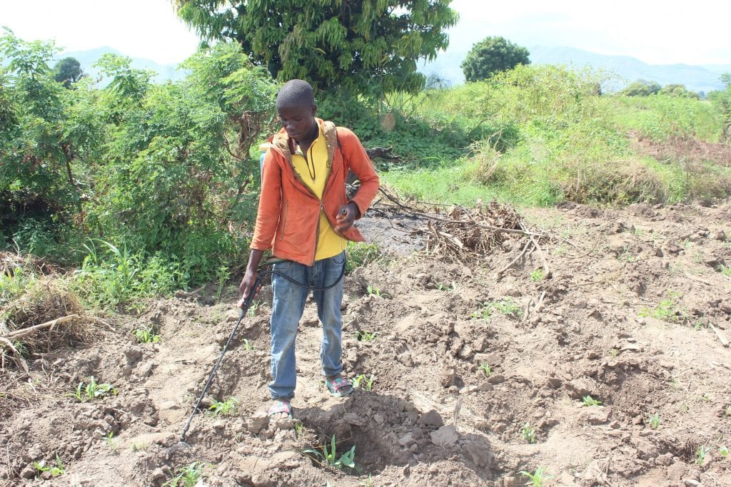 Male farmer using a shoulder-mounted, pump-action chemical dispenser, directing the units wand at armyworm-affected plants.